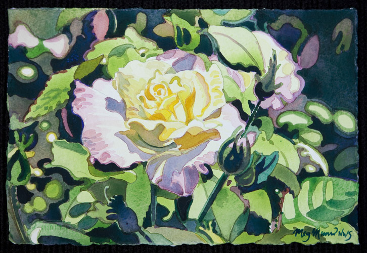 Floral 3 Meg Munro Artist Award Winning Watercolor Painter